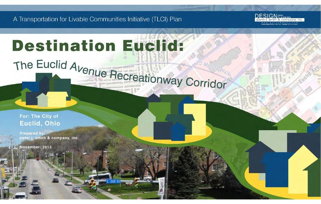 Euclid_TLCI_Report.pdf